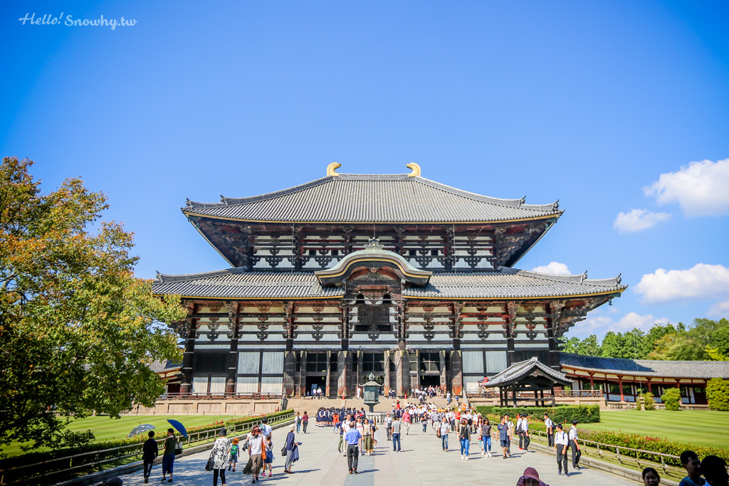 奈良世界文化遺產東大寺.世界最大的木造建築內看奈良大佛