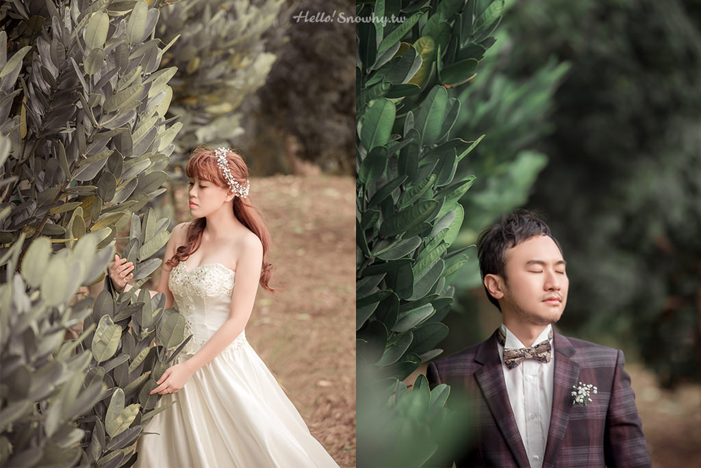 紙婚紀念日,結婚,婚姻,白雪姬,白雪姬喫趣玩,婚紗