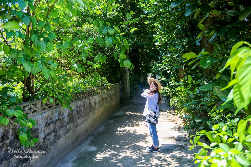 沖繩景點 備瀨福木林道(備瀬のフクギ並木).美麗海岸邊恬適靜謚的綠色隧道