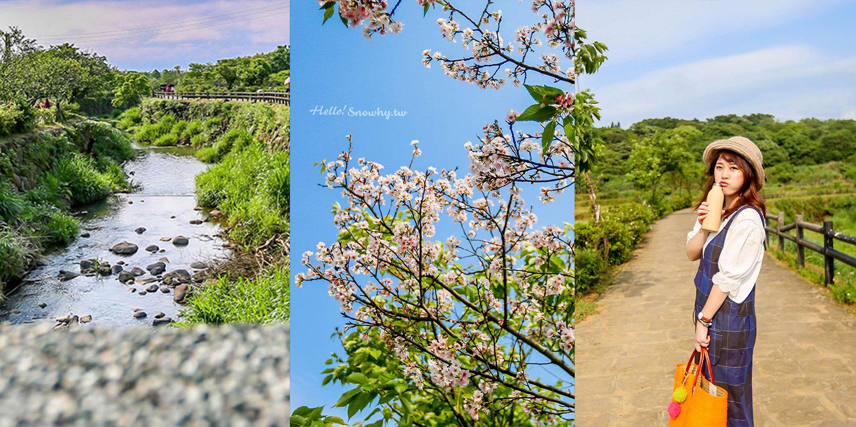 北海岸一日遊 三芝景點三生步道 | 賞櫻秘境、溪流與梯田的鄉間生態步道