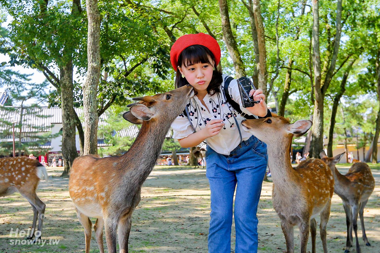 奈良自由行,奈良1日遊,奈良行程,日本交通票券,奈良必去景點,奈良餵鹿注意事項,奈良住宿美食懶人包,奈良小鹿,奈良美食,奈良飯店,奈良懶人包,奈良旅遊,奈良雜貨,遊中川,日本市