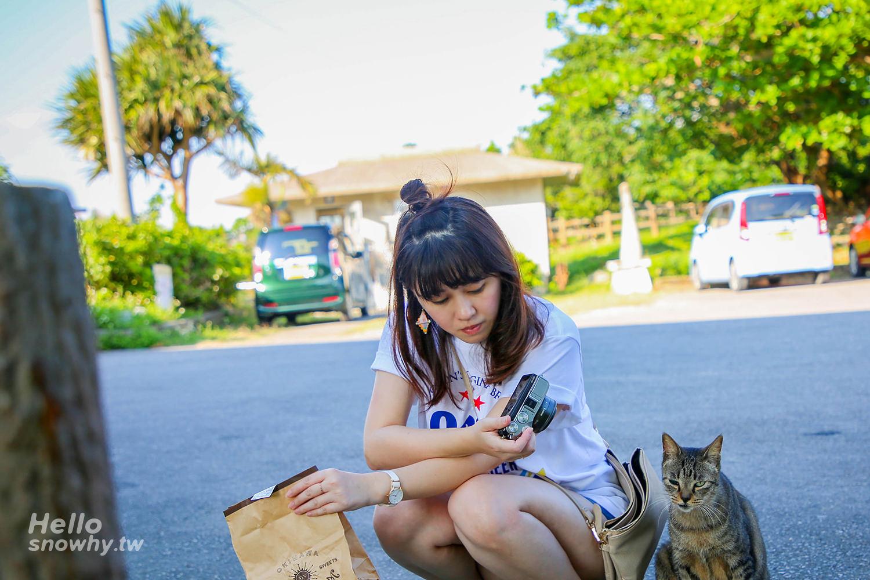 沖繩景點,具志頭城跡,具志頭公園,八重瀨町,沖繩自駕,沖繩自由行,沖繩海岸線
