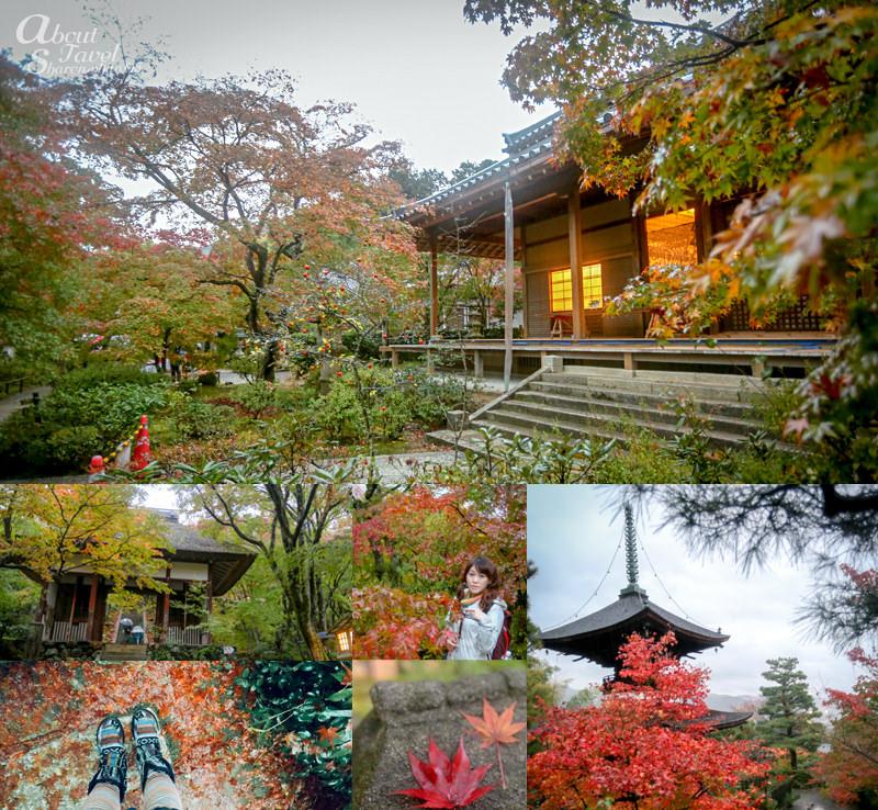 常寂光寺,京都嵐山紅葉散策,天龍寺,竹林之道,渡月橋,京都,紅葉