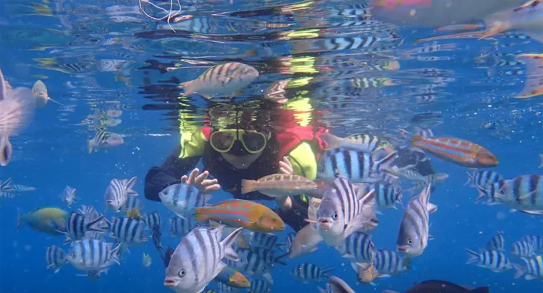 SUP體驗,今夏水上活動,立槳衝浪,澎湖限定行程,澎湖花火節,暑假水上活動,綠島台灣,浮潛,klook預定行程