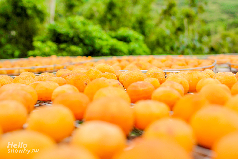 新竹景點,新埔柿餅,味衛佳觀光農場,季節限定拍照點,免費打卡點,觀光農場,九降風柿餅,柿餅,攝影