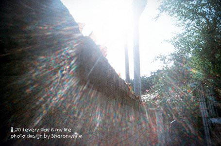 日記 | 下一站旅程
