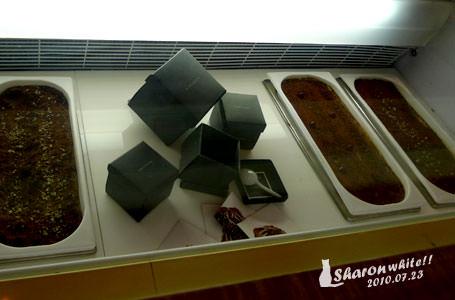 Black As Chocolate冰淇淋