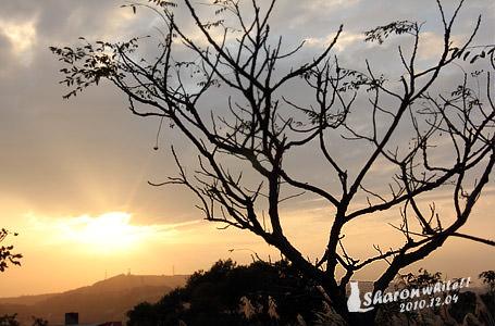 大平山夕陽