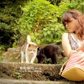 基隆 / 猴硐。貓村相簿封面