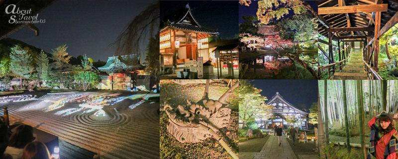 高台寺 圓德院,夜間拜觀,賞夜楓,掌美術館,京都,日本旅遊