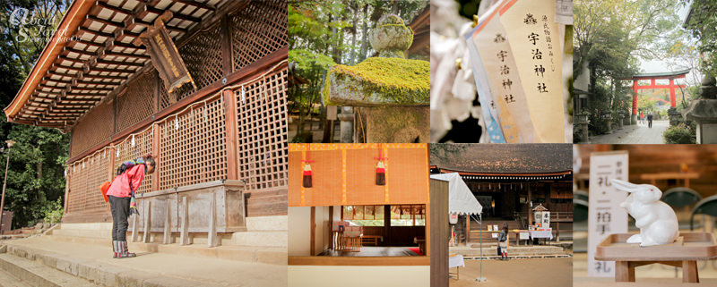 宇治上神社,宇治神社,京都,日本,賞楓行程