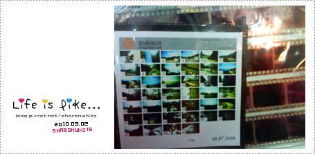 菲林 | Wide Lens Camera #1